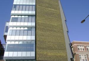 Custom Diablo Glazed Brick - University of Pennsylvania